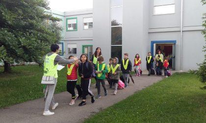 Pedibus Turate cerca volontari
