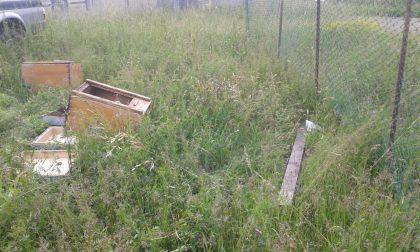 Distrutte le arnie delle api e scritte contro la Foppa LE FOTO