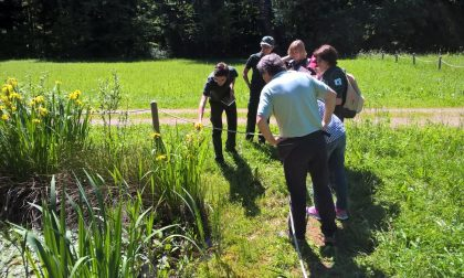 Laboratori, escursioni e cacce al tesoro nelle domeniche al Parco Pineta