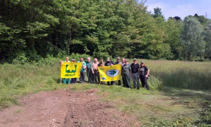 Guardie Ecologiche Varese: pulizia nel Plis della Bevera