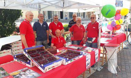 Giornata del donatore: Avis Saronno in piazza con le ciliegie