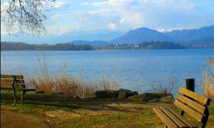 Risanamento del Lago di Varese