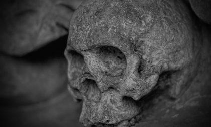 Trovate ossa umane in un'area ecologica di Saronno