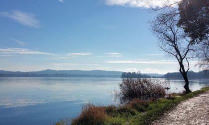 """Lago di Varese balneabile entro il 2023? """"Un sogno a portata di mano"""""""