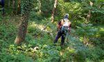 Il Bradipo zoppo riaccende motori con anche la novità Trail: si torna a correre