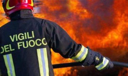 Capannone in fiamme a Caronno Pertusella, Vigili del Fuoco al lavoro