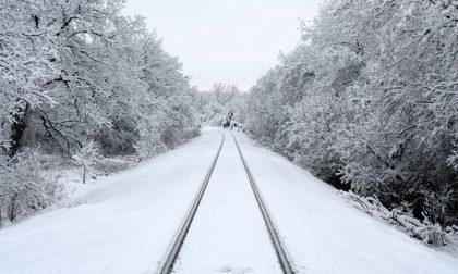Neve, treni bloccati, alberi caduti e disagi al traffico