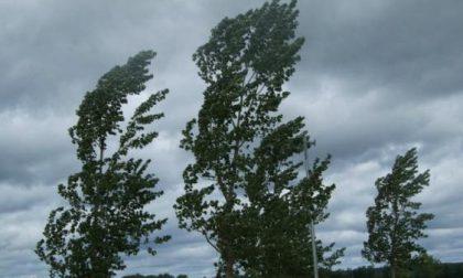 Vento forte e incendi boschivi: allerta della Protezione Civile