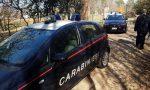 Fugge con la droga al controllo dei Carabinieri: arrestato