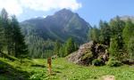Escursioni gratuite con le guide alpine nelle bellezze naturali lombarde
