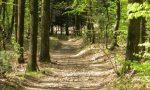 Parco Pineta: il centro didattico riapre su prenotazione