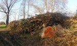 Piante abbattute nel Parco dei Mulini, Legambiente non ci sta – FOTO