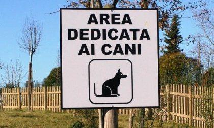 Castellanza, chiude l'area cani del parco dei Platani