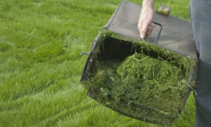 Uboldo, il verde si raccoglie a domicilio