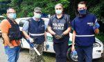 Armi e droga nel bosco, i ritrovamenti continuano