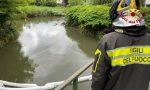 Idrocarburi nel torrente Margorabbia a Cunardo: chiazza confinata, indagini in corso
