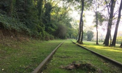 Ferrovia della Valmorea, nuovo tentativo: stavolta il Consiglio Regionale dice sì