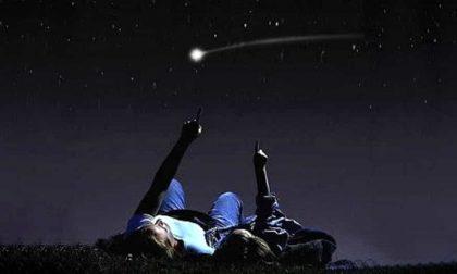 Pic nic sotto le stelle al Centro Didattico del Parco Pineta