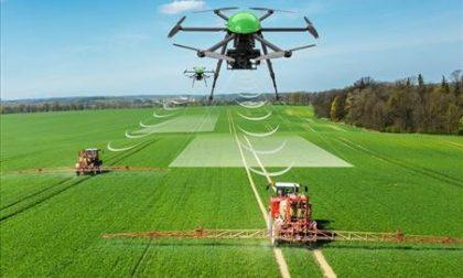 Sempre più droni in agricoltura: così la tecnologia entra nei campi