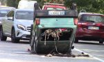 Ribaltamento in via Circonvallazione a Gorla, feriti due anziani