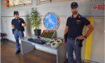 Nel garage 44 piante di marijuana, denunciato dalla Polizia di Busto