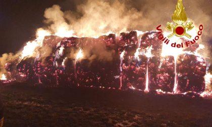 Rogo in un campo a Cairate, deposito di fieno in fiamme FOTO
