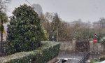 """Neve anche a Tradate. Pipolo: """"Pronti con sale e se servirà spazzaneve"""" VIDEO"""
