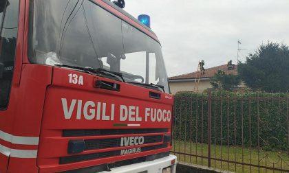 Dà fuoco a un'automobile sulla Saronnese