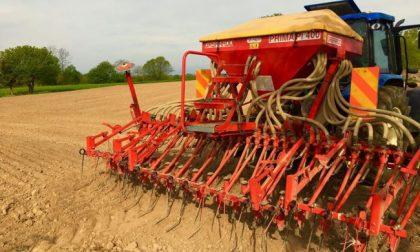 Busto, 50 ettari di terreni restituiti all'agricoltura