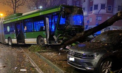 Bus si schianta contro le auto parcheggiate