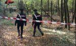 Spaccio al Parco delle Groane, arrestati due pusher di eroina