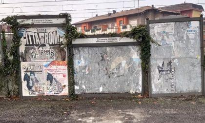 """Degrado e incuria a Cesate, il Movimento Nazionale: """"Roba da terzo mondo"""""""