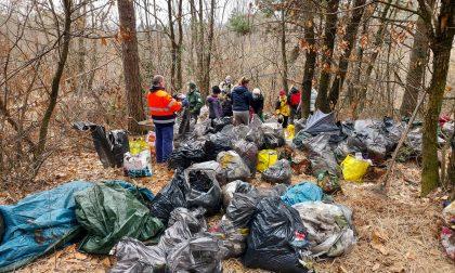 I cittadini si riprendono il bosco: primo intervento contro la discarica degli spacciatori nel Parco