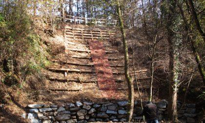 Finiti i lavori nel Parco Pineta nella valle del Bozzente