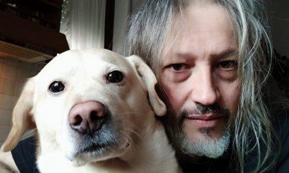 """""""Sono stato avvelenato da qualcuno che sa solo odiare noi cani"""": la storia di Beethoven commuove tutti"""