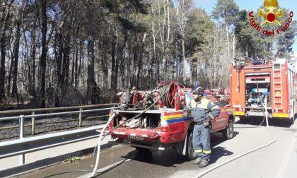 Incendio boschivo, Vigili del fuoco a Ceriano Laghetto