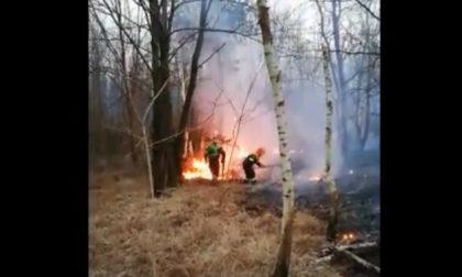 Incendio a Ca' del Re a Solaro: fiamme contenute e sconfitte