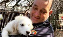 Dal canile alla loro nuova casa:  fratelli cuccioli adottati da due agenti