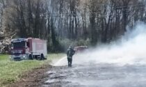 Dà fuoco alle sterpaglie, prende fuoco tutto il campo: ancora fiamme a Lonate