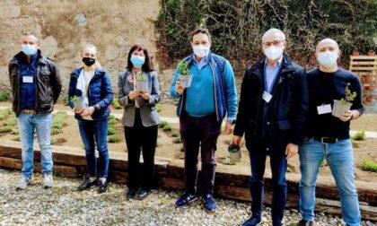 Spunta l'orto dentro al carcere di Varese