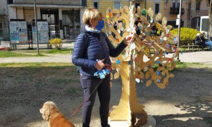 Gli alberi pasquali decorati dai bimbi colorano le piazze di Tradate