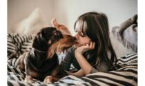 Pet therapy per bambini: quali sono le razze canine che si prestano di più?