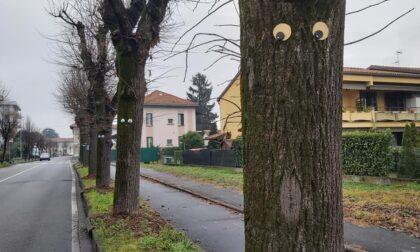 Via Dante diventa «via del sorriso»