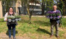 Solaro, orti biologici a scuola per favorire l'inclusione