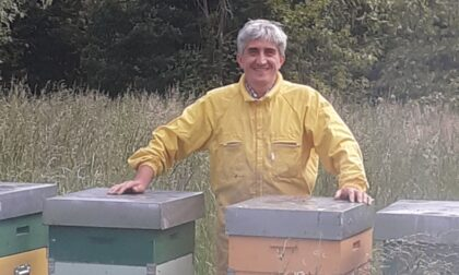 Rinato grazie alla Neuroradiologia Interventistica del Circolo...e le api ringraziano