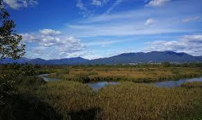 Alla scoperta della riserva naturale Palude Brabbia