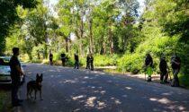 Maxioperazione nei boschi di Tradate a caccia degli accampamenti dei pusher