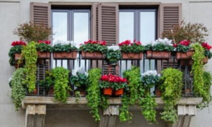 Balconi Fioriti, le iscrizioni fino al 10 settembre