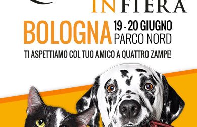 Quattrozampeinfiera: la grande festa per cani e gatti