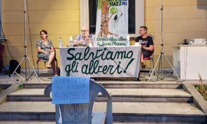 """Piazza Mazzini, la sfida di Zanzi e del Comitato: """"Il Comune ci faccia fare le analisi sugli alberi"""""""